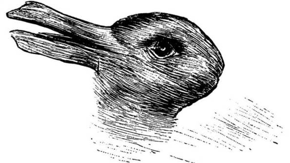 rabbit-duck-drawing-tease-today-160215_48fe2de007003bff87240c2107aaa762.today-inline-large